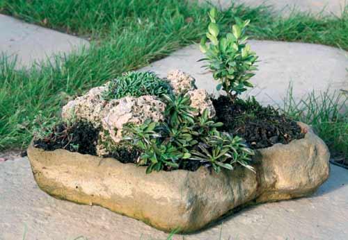 Misky na bonsaje - květináč