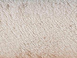 Deka Korall 100 x 150 cm, béžová