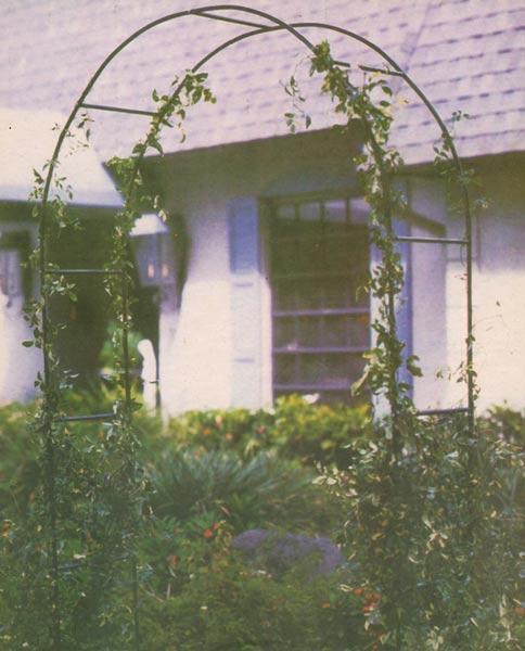 Zahradní oblouk pro popínavé rostliny 1698