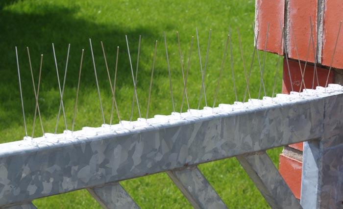Ochranné hroty proti holubům 50 cm
