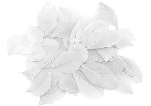 Dekorační peří 3 g - bílé
