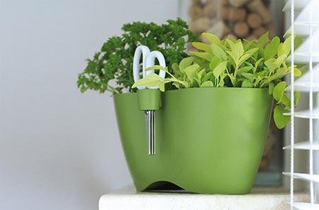 Květináč na bylinky LIMES DUBLO 2,3 l, zelený, Prosperplast