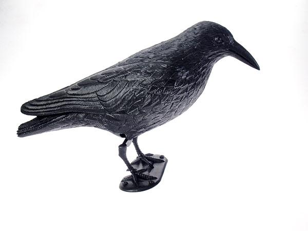 Maketa dravce - havran na plašení ptáků Adodo 923