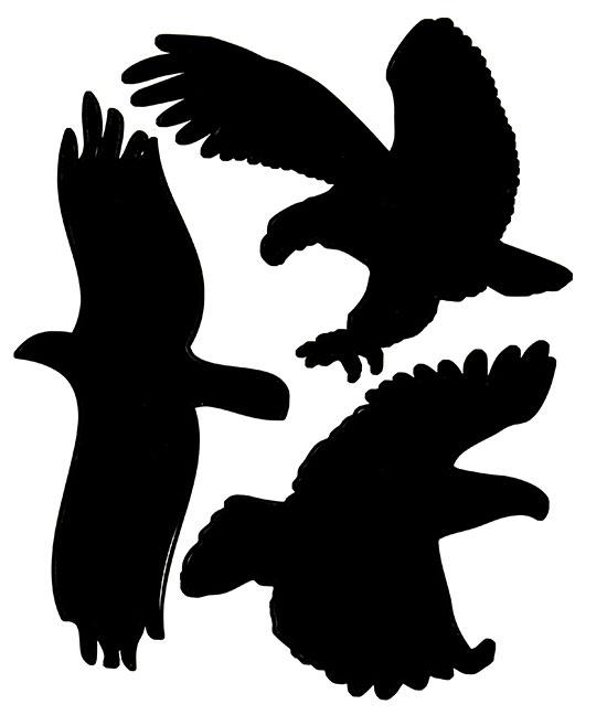 Samolepící silueta dravců na plašení ptáků 429, 38 x 30 cm
